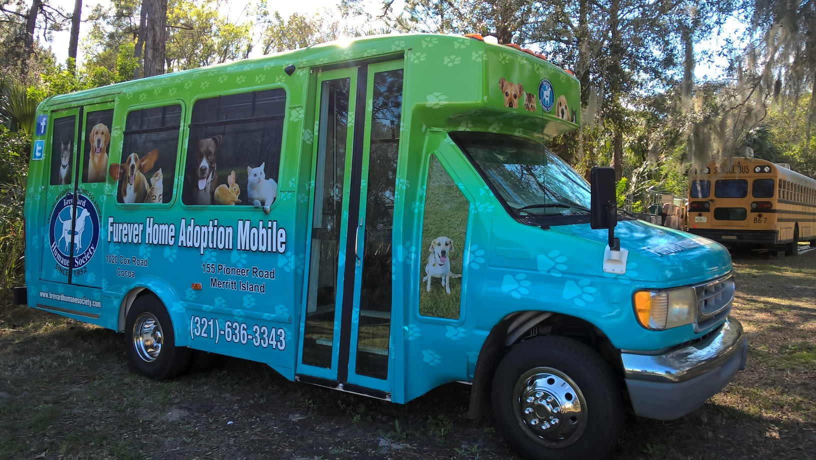 Furever Home Adoption Mobile