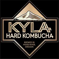 Kyla_Hard_Kombucha